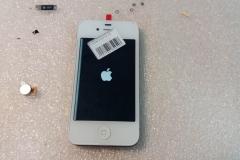 iPhone5(5)
