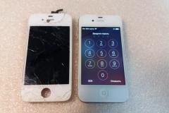 iPhone5(6)